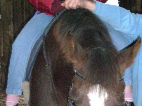 Bild Thu, 11/12/2009 - 23:54